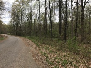 3.25 Acres Off Forest Hill Irene Rd Cordova, TN 38018