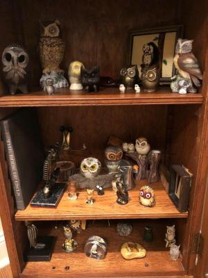 Large collection of owl figurines