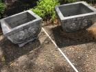 Pair of square outdoor concrete planters