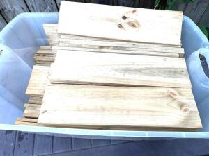 50 plus pieces of cut wood in plastic container