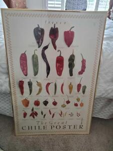 "A framed poster titled ""the great chile poster"""