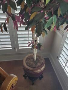 A beautiful faux ficus tree in a splendid vase (stand not included)