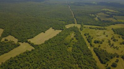 124+/- ACRES NEAR LICKING, MO WITH MINERAL RIGHTS