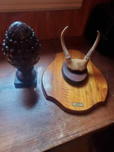 A couple of decorative items, 1 is a plaque with horns from a taxidermist, 16 x 12, the other is an artichoke