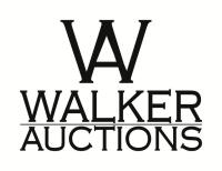 Auction Information (do not bid on this lot)