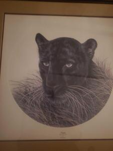 "A marvelously framed and matted print by great animal artist i.h. farnswoth, titled, ""panther"" with certificate"
