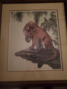 An attractively framed and matted, signed by the artist, limited edition print by great animal artist i.h. farnswoth, of a cougar