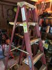 Werner 6ft ladder