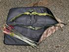 Lot of 2 bows and plenty of arrows with a carrying bag